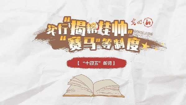 """手绘动画丨【""""十四五""""新词】""""实行'揭榜挂帅'、'赛马'等制度"""""""