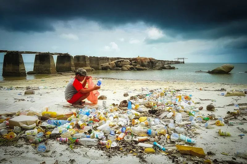 """能""""吃""""塑料的细菌被寄予厚望!但大规模商用仍需时日"""