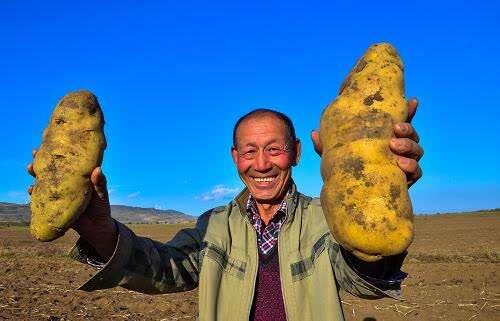 """土豆种子论粒卖、喝得惯凉水的bet威博首页""""泥腿子""""……五段暖心""""小故事""""讲"""