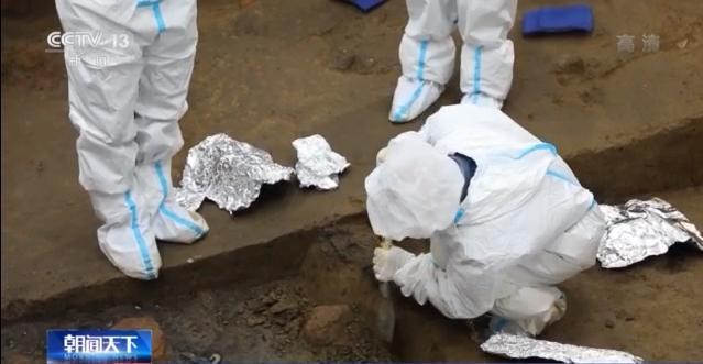专家:三星堆遗址8号坑发现与祭祀建筑相关遗存
